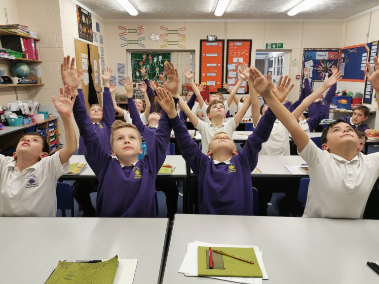 Barn Owls | Thompson Primary School